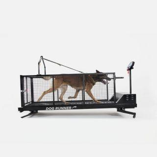 Dog runner XL